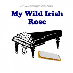 My Wild Irish Rose - piano / harmonica